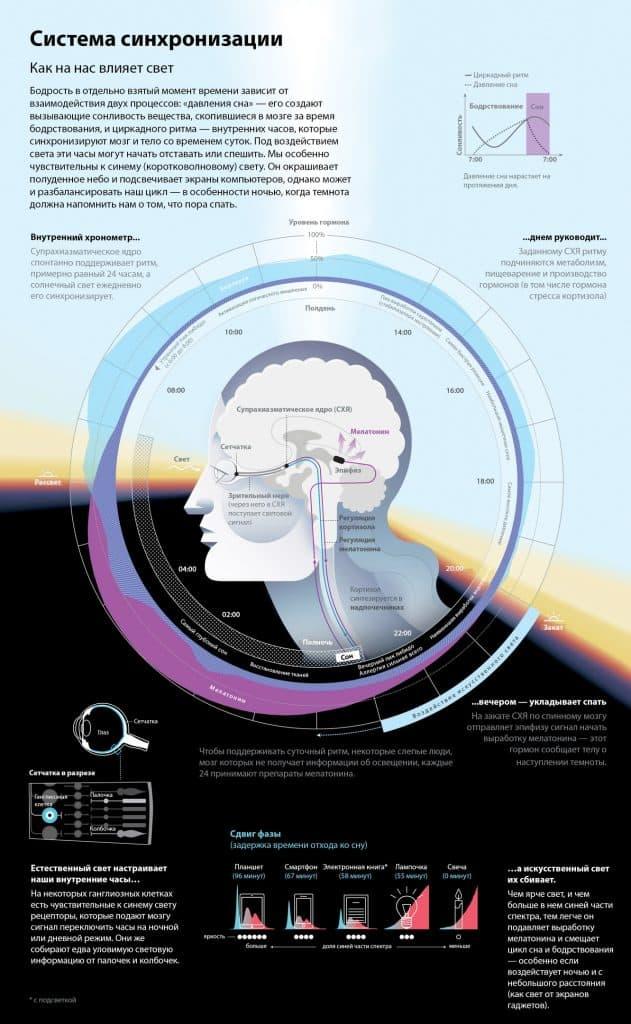 Удивительные приключения мозга во сне 10