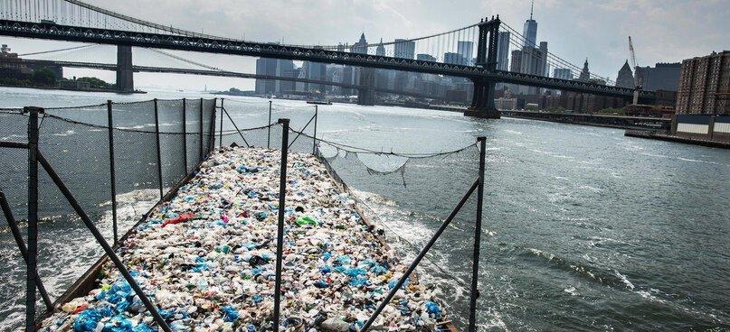 Утопающие в мусоре 6