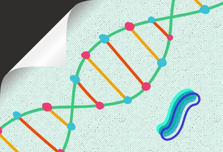 Не геном единым 1