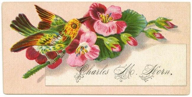 Как флиртовать с помощью книг: инструкции из викторианских открыток 2