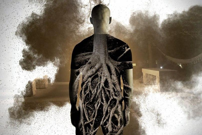 Жестокое зеркало: как психоделический опыт с аяуаской изменил меня 5