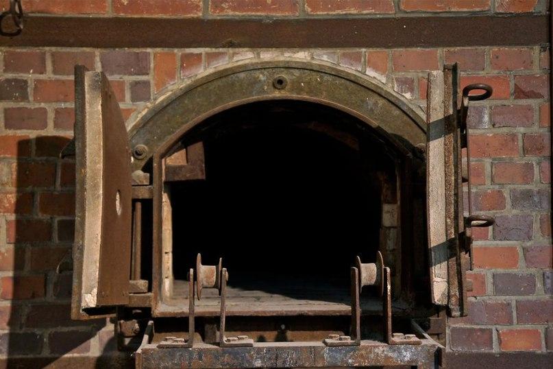 Выгорание: что на самом деле происходит в крематории 5