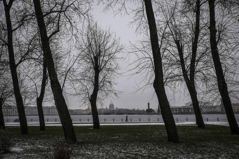 Русские миллениалы смотрят в будущее: «Если мы ничего не сделаем сейчас, то будем жить как наши родители» 20