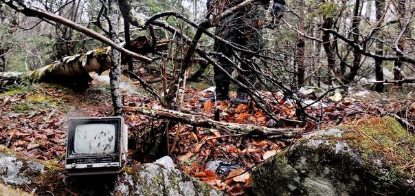 Человек, который прожил в лесу 27 лет 2