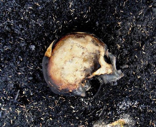 «Территория пропавших людей» 5