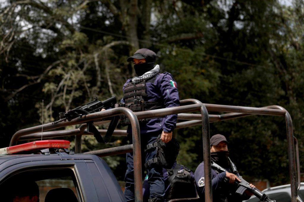 Война мексиканских картелей за контроль над оборотом... авокадо 10