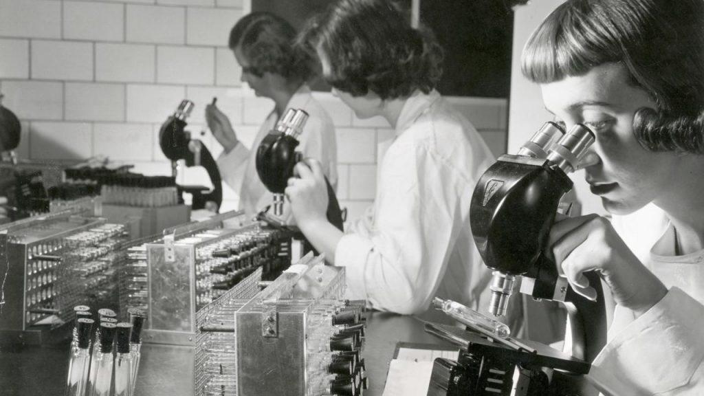 Covid-19: история пандемий 4