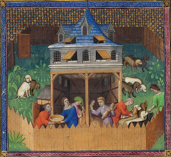 Средневековый мир собак 5